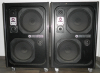 Wersi T210 Aktiv-Lautsprecher